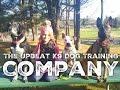 The Upbeat K9 Dog Training Company