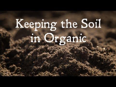 Keeping the Soil In Organic