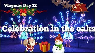 Vlogmas Day 12| Celebration in the Oaks!!