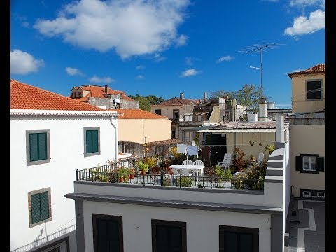 DIY Free lightweight roof top gardens