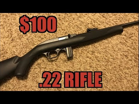 Mossberg 702 Plinkster Review Cheap 100 22 Rifle Youtube