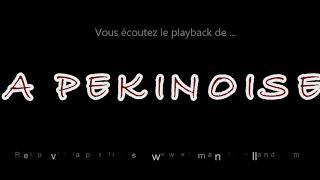 """Playback """"LA PEKINOISE""""composée par Emmanuel Rolland"""