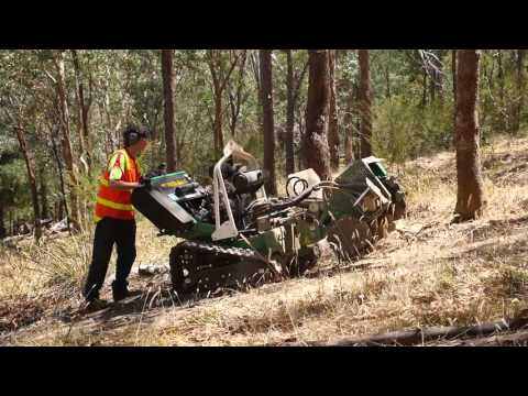 Tree Stump Removal For Hire