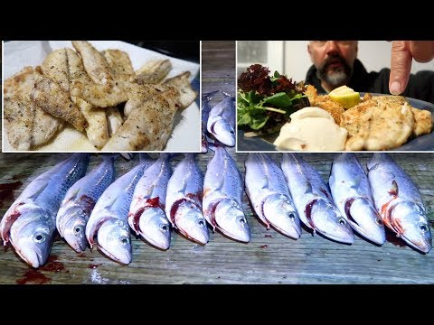 Night Fish CATCH And COOK  Fillets & Lemon Dill Panko Potato Cakes