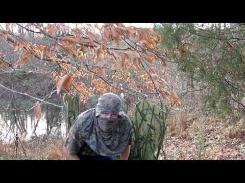 Matrix Bulldog Vs Ghost Blind Vs Mega Boom Target Vs Zombie