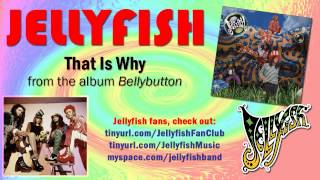 Jellyfish - That Is Why Thumbnail
