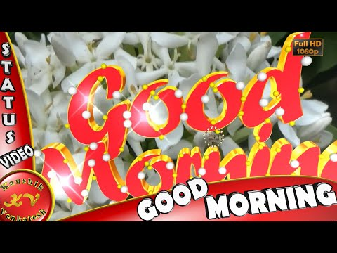 Good Morning Wishes,Whatsapp Video,Greetings,Animation,Messages,Quotes,Download