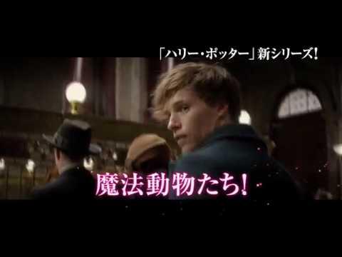 『ファンタスティック・ビーストと魔法使いの旅』オンラインSPOT(魔法動物編)
