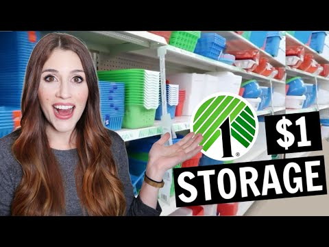 The Best Dollar Tree Organization Items | $1 Storage