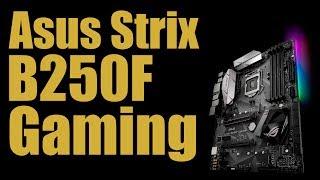 Обзор Asus strix b250f gaming от Александра