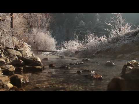 Gentle Sound of a Small Stream 1 Hour / Morning Frost and Water Mist