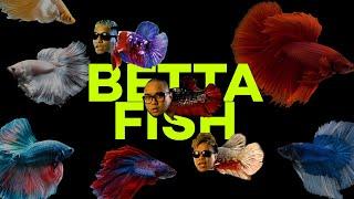 Download Lagu ALLDONE KLAAR - BETTA FISH Feat SAYKOJI & NGAPZ MP3