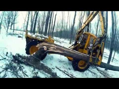 Winter Logging In Wisconsin