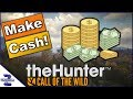 How To Make Cash as Beginner Call of the Wild