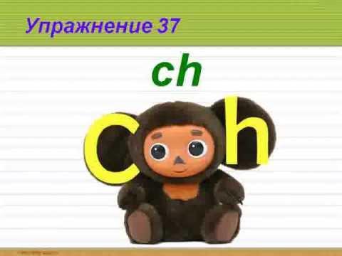 Английский язык для начинающих изучение в Перми. Языковой