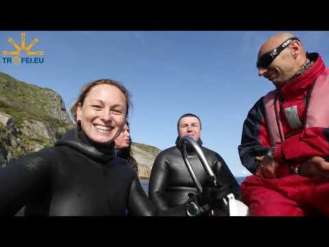 Spearfishing In Norway. Подводная Охота в Норвегии. Лофотены