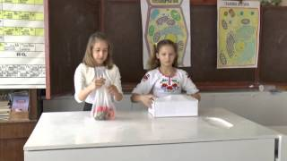 урок у 6 класі біологія Благовіщенська ЗОШ