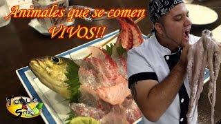 Animales que se comen VIVOS ¡¡Insólito!! (TOQUE Y SAZÓN)