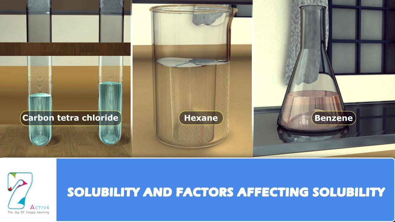 worksheet Factors Affecting Solubility Worksheet solubility and factors affecting youtube