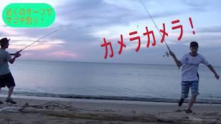 夏のビーチでナウでヤングなアイツをゲット【三重県 河芸】
