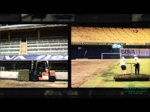 Renovacion campo de juego La Bombonera 2015 - NUEVOS VERDES