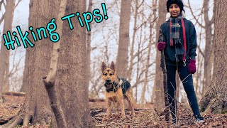 3 Beginner Tips for Hiking with a German Shepherd Dog