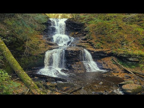 Ricketts Glen Waterfalls | 2 Hours White Noise for Sleep | A