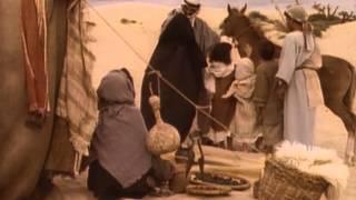 El caballo árabe