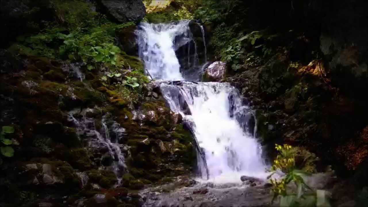 Best 1 Hour - 40 Waterfalls Relaxing Scenes with Cool Mountain Forest ...