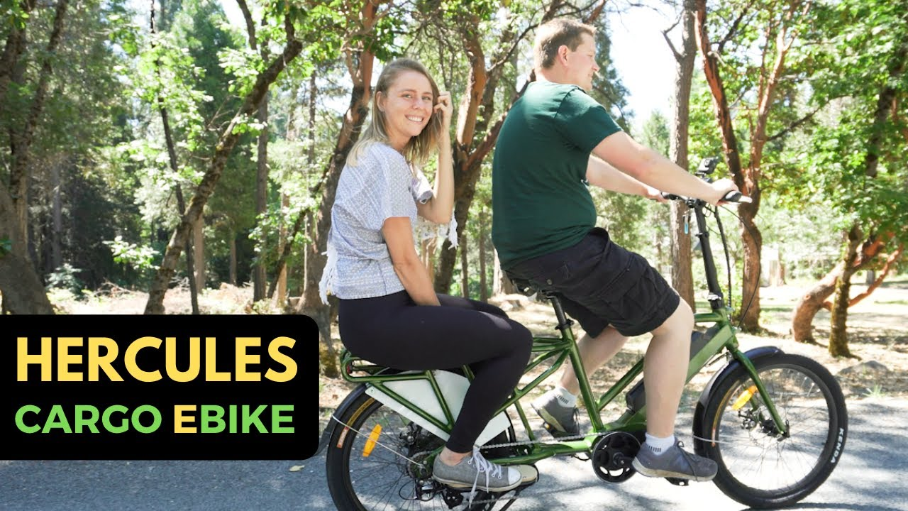 This Is The Perfect Electric Bike For A Passenger