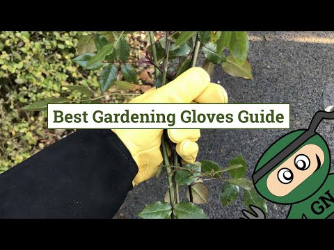 Gardening Gloves Reviewed: The Best 4 Glove Types For Gardening