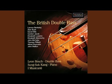 A Little Concerto For Double Bass And String Orchestra: II. Largo