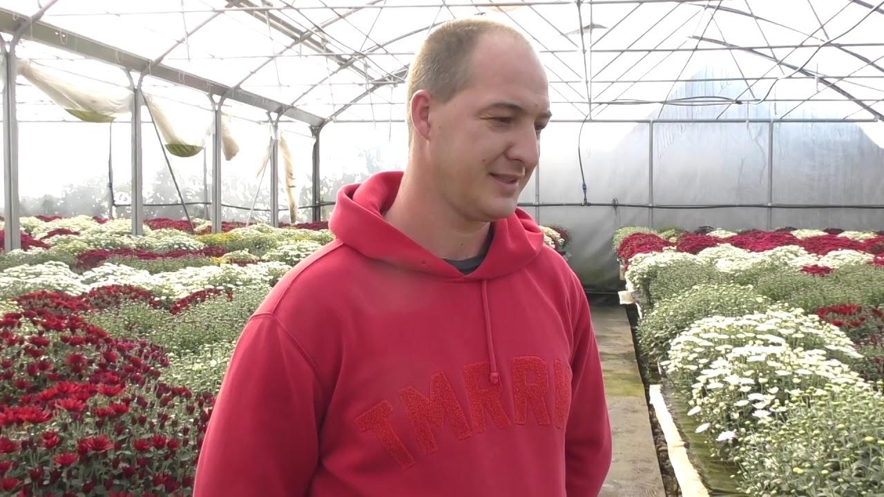 Interviu Levente Ferencz - horticultor Viișoara (18.10.2019)