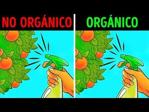 comida no orgánica y diabetes