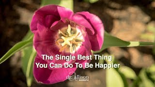 Baixar The Single Best Thing You Can Do To Be Happier