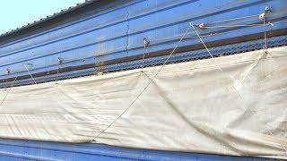 #2 Wentylacja kurtynowa (grawitacyjna) w chlewni - WYWIAD z hodowcą trzody | JOTAFAN