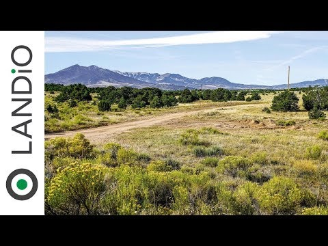 Land For Sale : 42 Acre Ranch with Electricity & Road Frontage near Walsenburg, Colorado