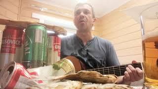 прикольная авторская песня под гитару. ПИВНАЯ - ЧАСТУШКА.