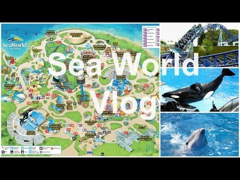 Sea World, San Diego Vlog