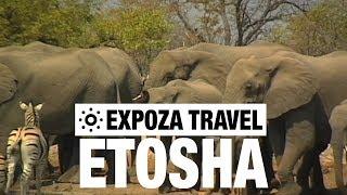 Etosha (Namibia) Vacation Travel Video Guide