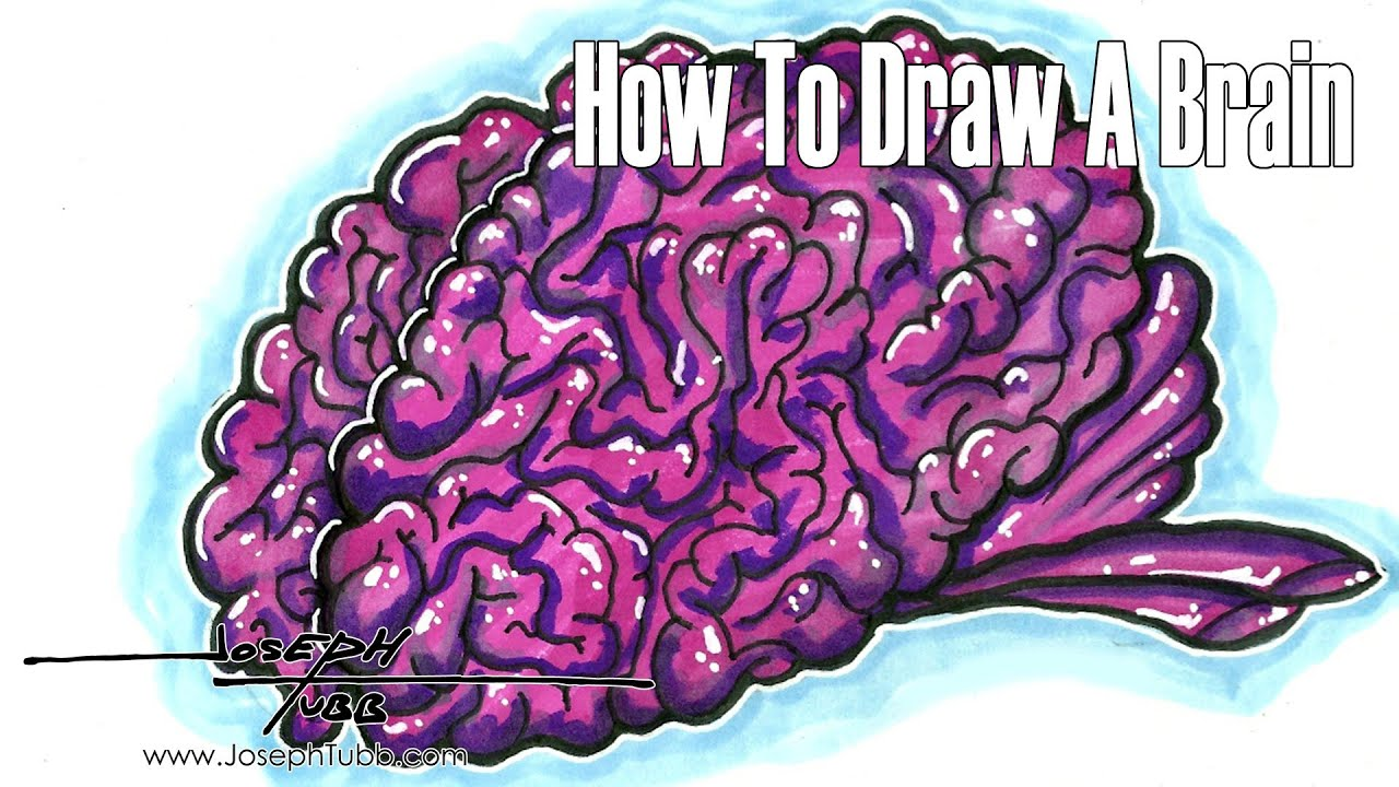 How To Draw A Brain - YouTube
