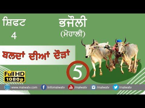 BHAJAULI (Mohali) ● OX RACE - 2018 ● SHIFT 4th ● बैल गाड़ी की दौड़ें بیل گاڑی کی دوڑے- ● Full HD  5