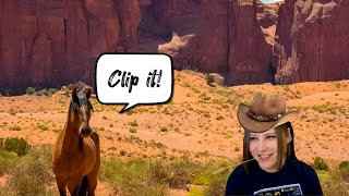 Clippy Clips Episode 4 : Clip It!