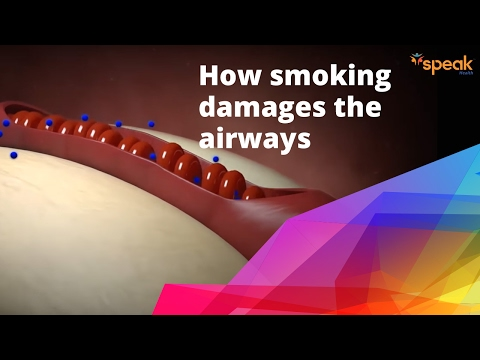 How smoking damages the airways