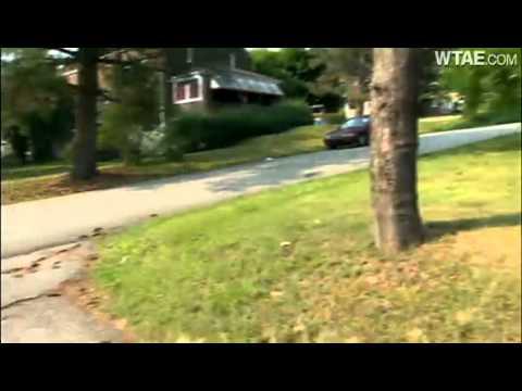 Pit bull attacks woman, Shih Tzu during morning walk