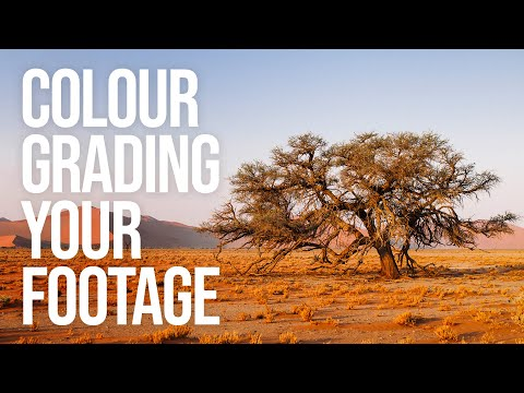 Color Grading your footage and Creating your own LUTs (FCPX and Photoshop)