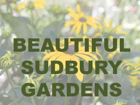 Beautiful Sudbury Gardens