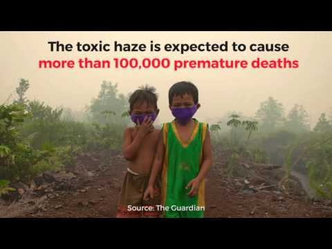 The biggest environmental disaster of 2015...