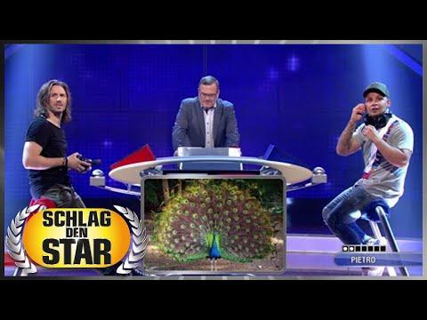 Tierstimmen (Spiel 3) - Pietro Lombardi vs. Gil Ofarim   Schlag den Star