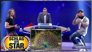 Tierstimmen (Spiel 3) - Pietro Lombardi vs. Gil Ofarim | Schlag den Star